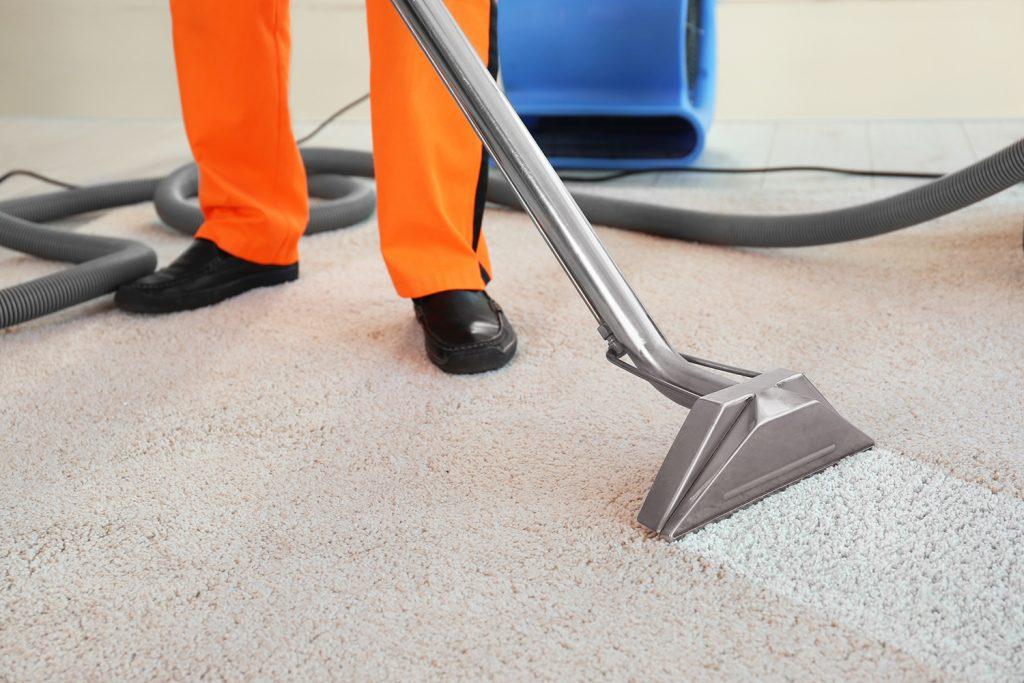 domowy sposob na czyszczenie dywanu